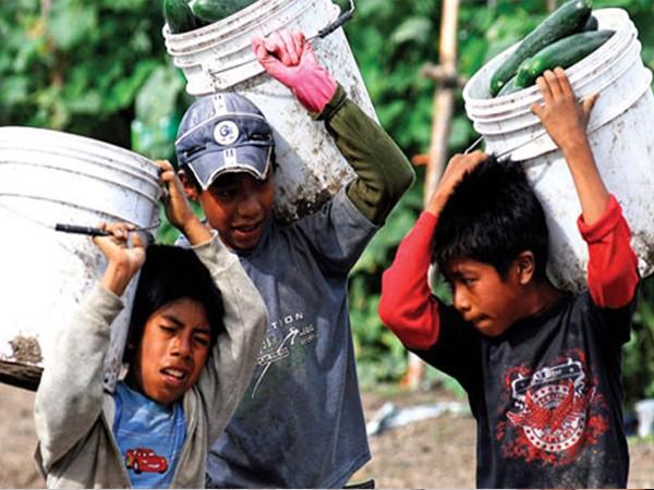 ¿Trabajo infantil?
