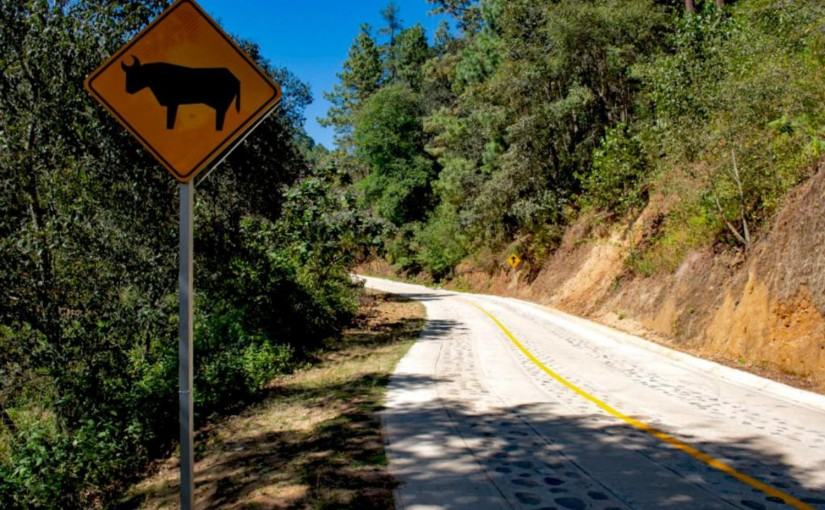 Los caminos rurales promueven el bienestar a través de la comunicación terrestre:CMT